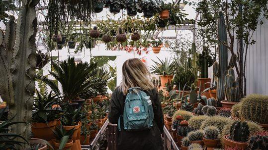 Teenager sind in der Pubertät wie ein Kaktus